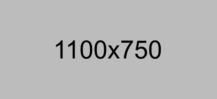 1100×750